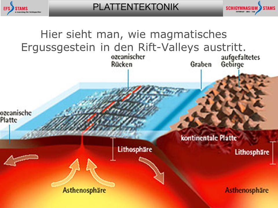 PLATTENTEKTONIK Plattentektonik24 Hier sieht man, wie magmatisches Ergussgestein in den Rift-Valleys austritt.