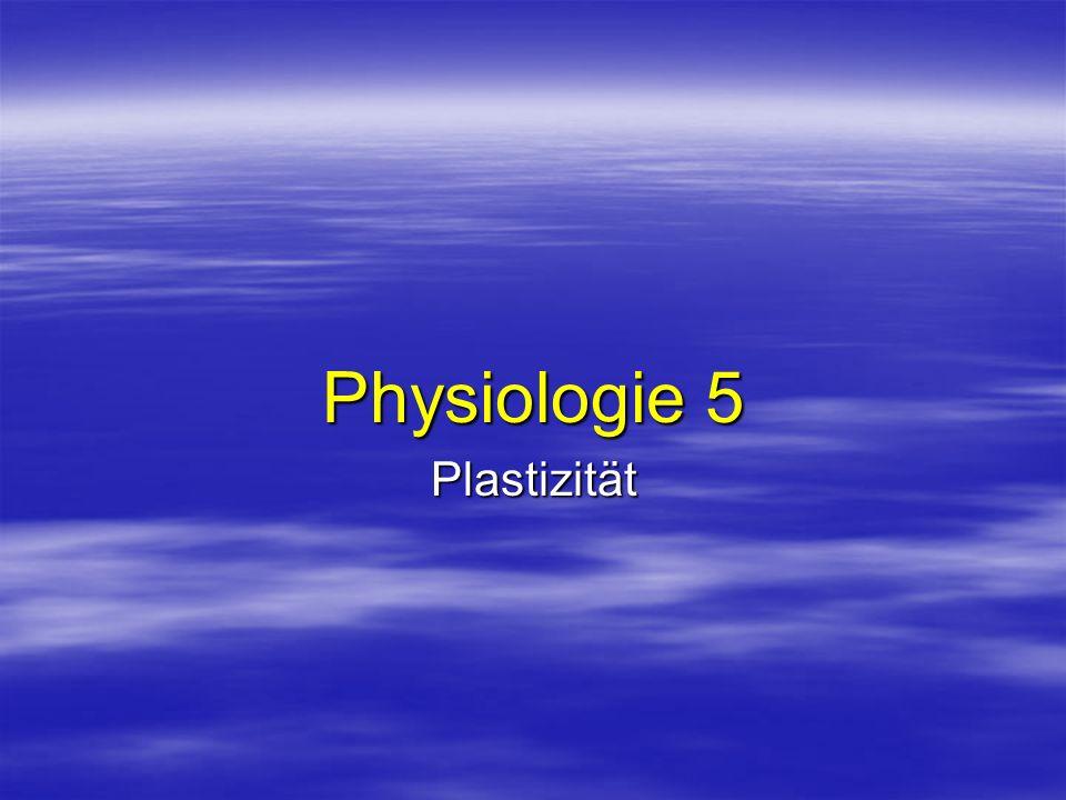 Physiologie 5 Plastizität