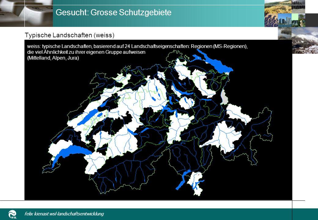 WSL felix kienast wsl-landschaftsentwicklung Gesucht: Grosse Schutzgebiete Typische Landschaften (weiss) weiss: typische Landschaften, basierend auf 24 Landschaftseigenschaften: Regionen (MS-Regionen), die viel Ähnlichkeit zu ihrer eigenen Gruppe aufweisen (Mittelland, Alpen, Jura)