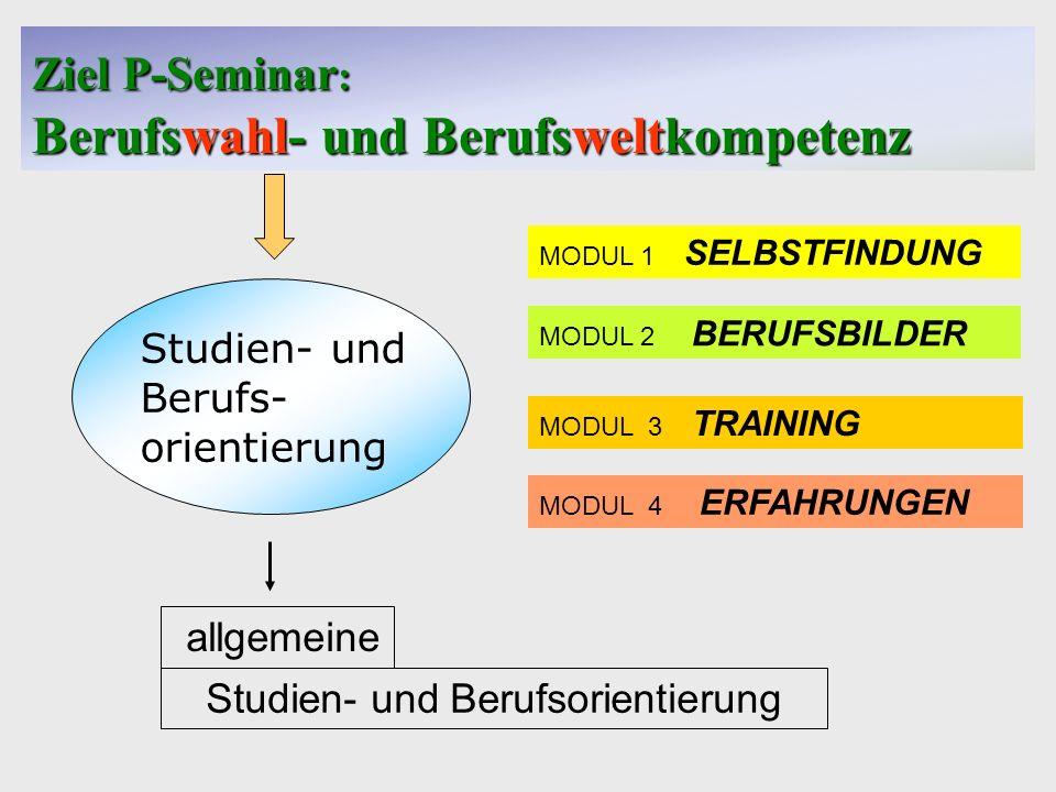 Gymnasium Casimirianum Coburg Ziel P-Seminar : Berufswahl- und Berufsweltkompetenz Studien- und Berufs- orientierung allgemeine Studien- und Berufsori