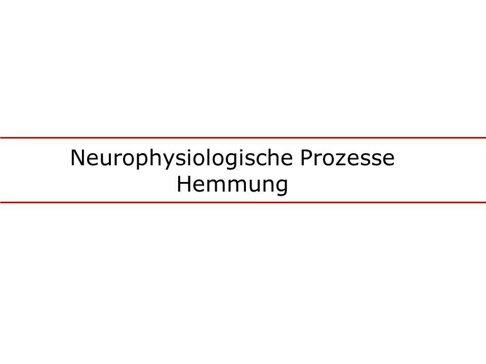 Neurophysiologische Prozesse Hemmung