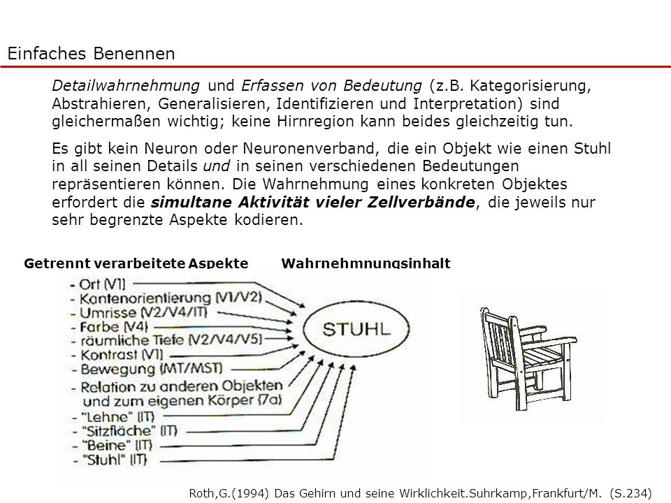 Einfaches Benennen Detailwahrnehmung und Erfassen von Bedeutung (z.B. Kategorisierung, Abstrahieren, Generalisieren, Identifizieren und Interpretation