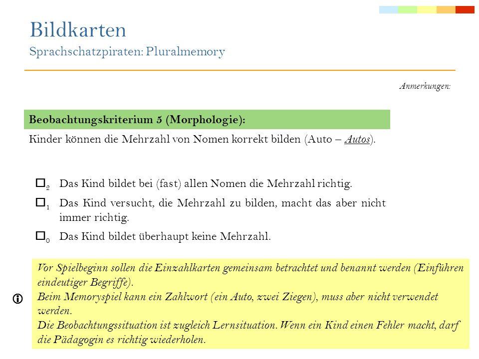 Bildkarten Sprachschatzpiraten: Ober- und Unterbegriffe Die Kindergartenpädagogin agiert als Spielleiterin.
