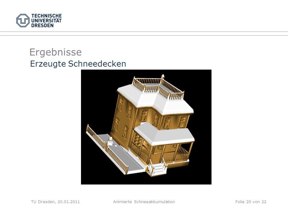 Ergebnisse TU Dresden, 20.01.2011Animierte SchneeakkumulationFolie 20 von 22 Erzeugte Schneedecken