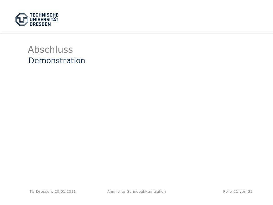 Abschluss TU Dresden, 20.01.2011Animierte SchneeakkumulationFolie 21 von 22 Demonstration