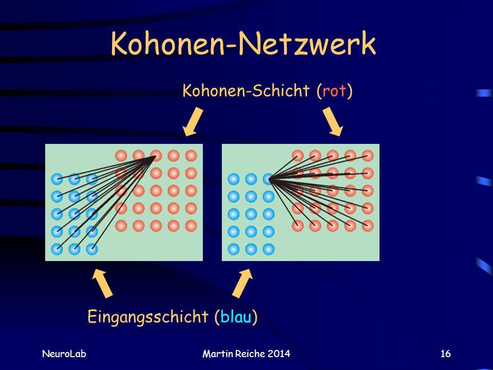 Kohonen-Netzwerk NeuroLabMartin Reiche 201416 Kohonen-Schicht (rot) Eingangsschicht (blau)