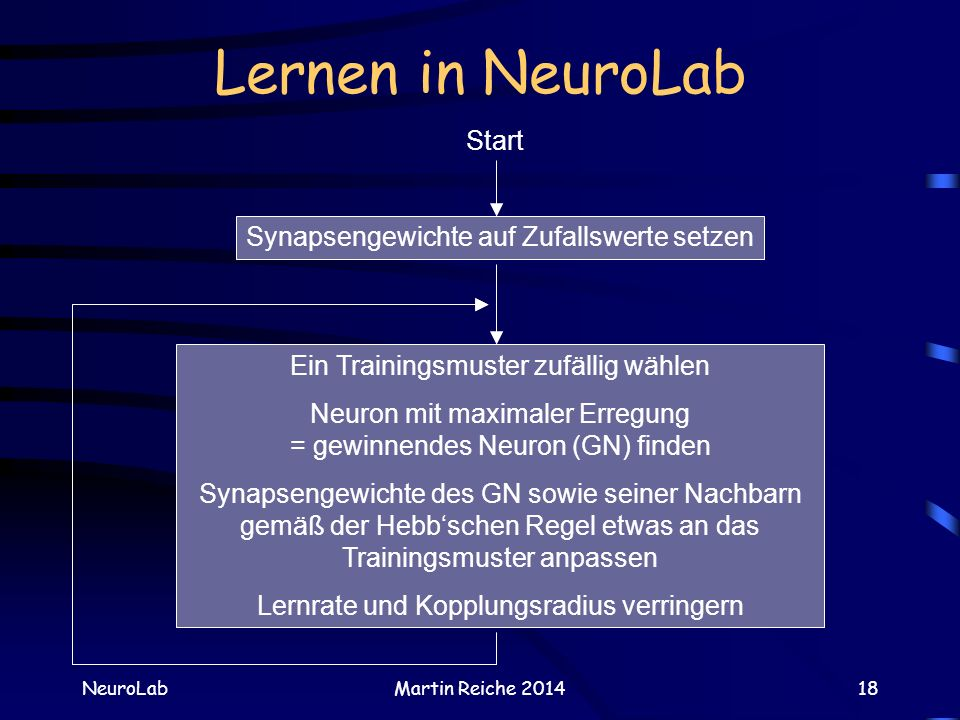 Lernen in NeuroLab NeuroLabMartin Reiche 201418 Synapsengewichte auf Zufallswerte setzen Ein Trainingsmuster zufällig wählen Neuron mit maximaler Erre