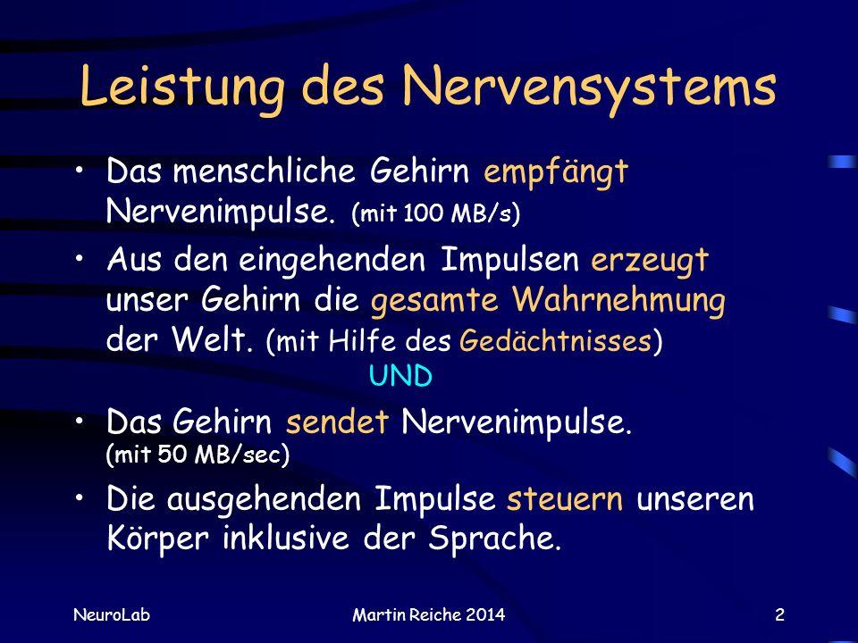 Lernen in NeuroNet: somatotopische Karte (2) NeuroLabMartin Reiche 201423 Aber was man nicht kann, kann man ja lernen.