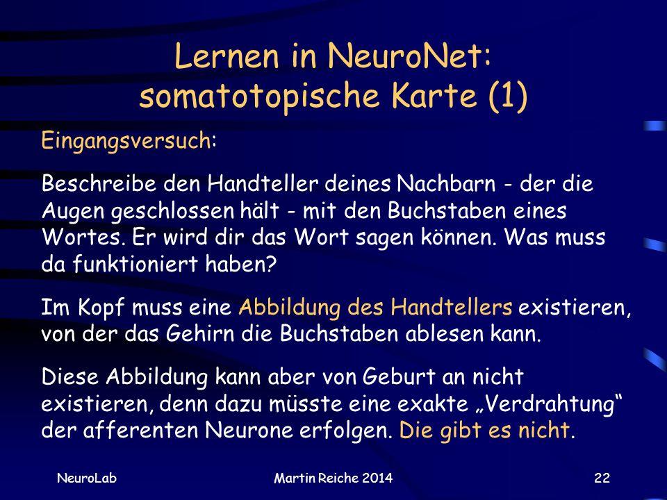 Lernen in NeuroNet: somatotopische Karte (1) NeuroLabMartin Reiche 201422 Eingangsversuch: Beschreibe den Handteller deines Nachbarn - der die Augen g