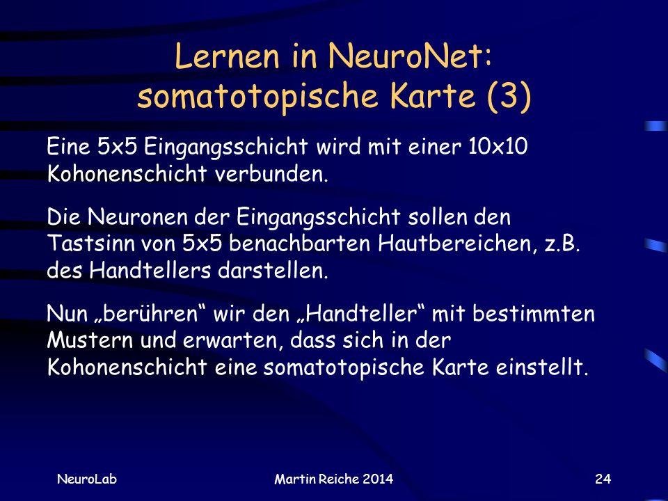 Lernen in NeuroNet: somatotopische Karte (3) NeuroLabMartin Reiche 201424 Eine 5x5 Eingangsschicht wird mit einer 10x10 Kohonenschicht verbunden. Die