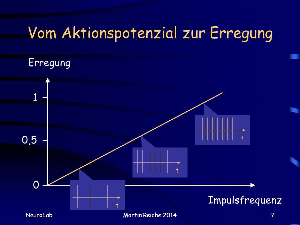 Vom Aktionspotenzial zur Erregung NeuroLabMartin Reiche 20147 Impulsfrequenz Erregung 0 0,5 1 ttt