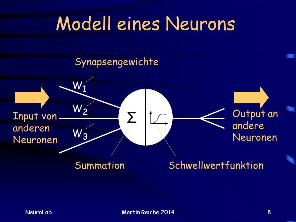 Modell eines Neurons NeuroLabMartin Reiche 20148 Input von anderen Neuronen Output an andere Neuronen Σ W2W2 W1W1 W3W3 Synapsengewichte SummationSchwe