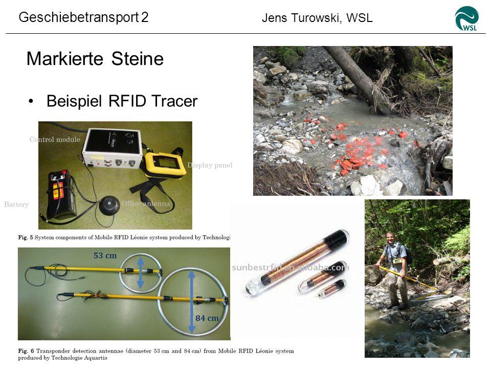 Geschiebetransport 2 Jens Turowski, WSL Markierte Steine Beispiel RFID Tracer