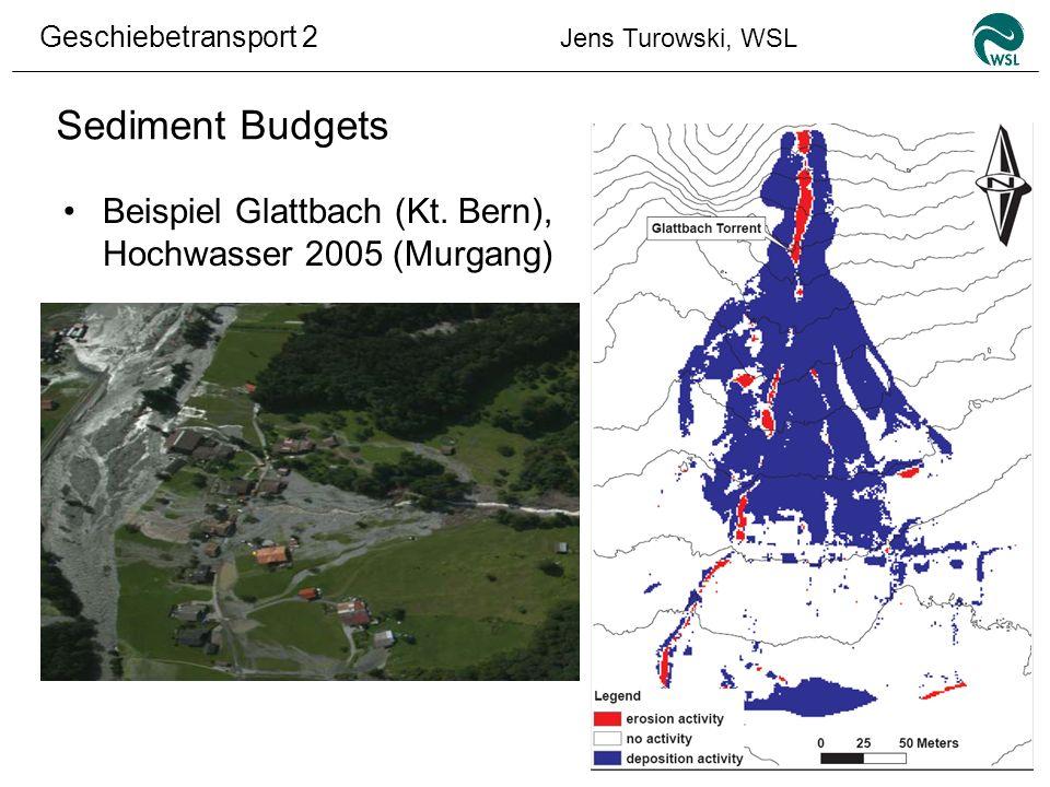 Geschiebetransport 2 Jens Turowski, WSL Sediment Budgets Beispiel Glattbach (Kt. Bern), Hochwasser 2005 (Murgang)