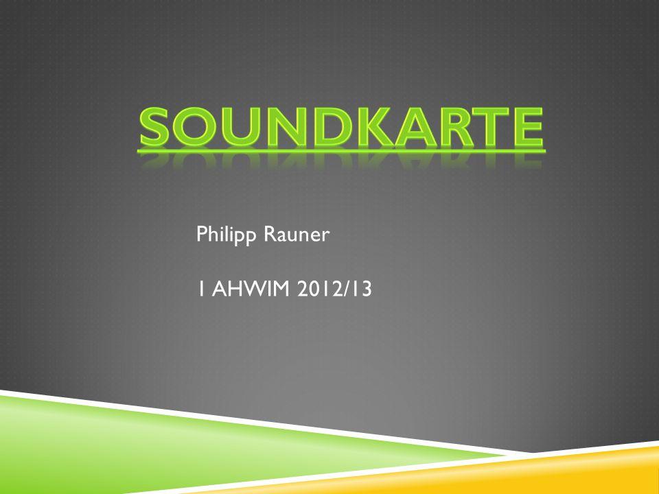 Philipp Rauner 1 AHWIM 2012/13