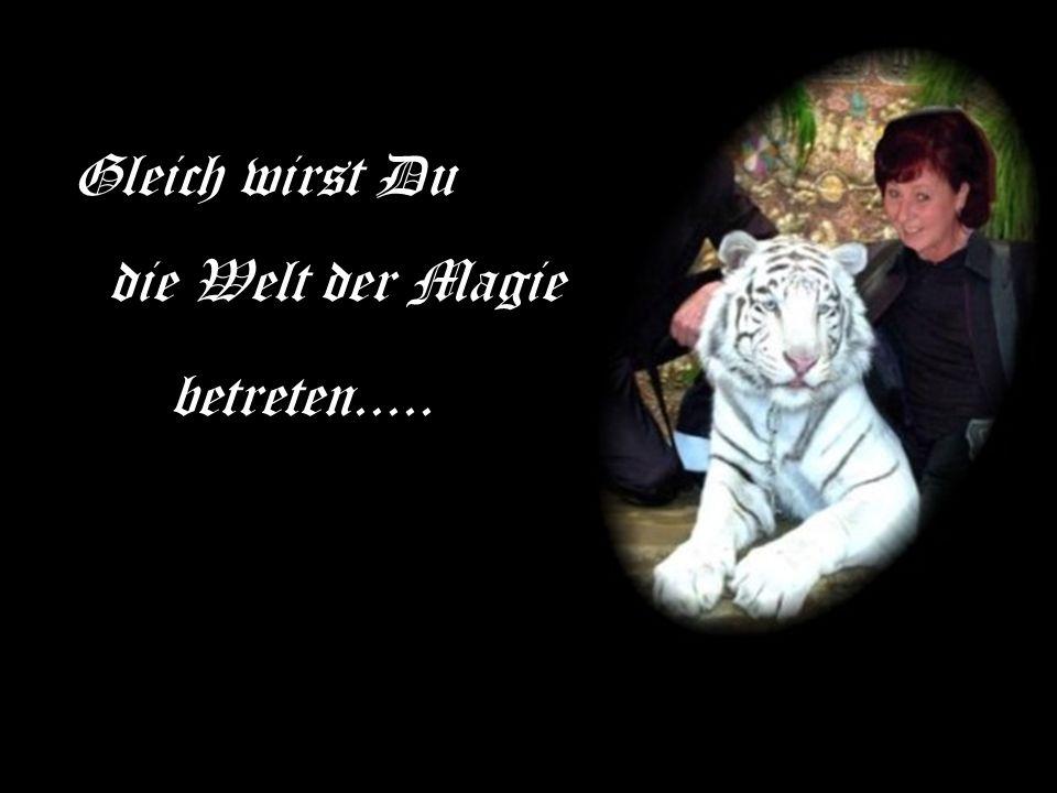 Gleich wirst Du betreten..... die Welt der Magie