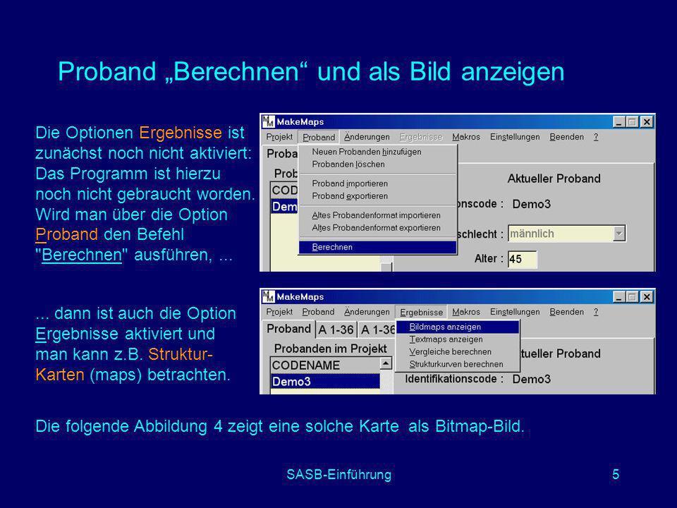 SASB-Einführung5 Proband Berechnen und als Bild anzeigen Die Optionen Ergebnisse ist zunächst noch nicht aktiviert: Das Programm ist hierzu noch nicht