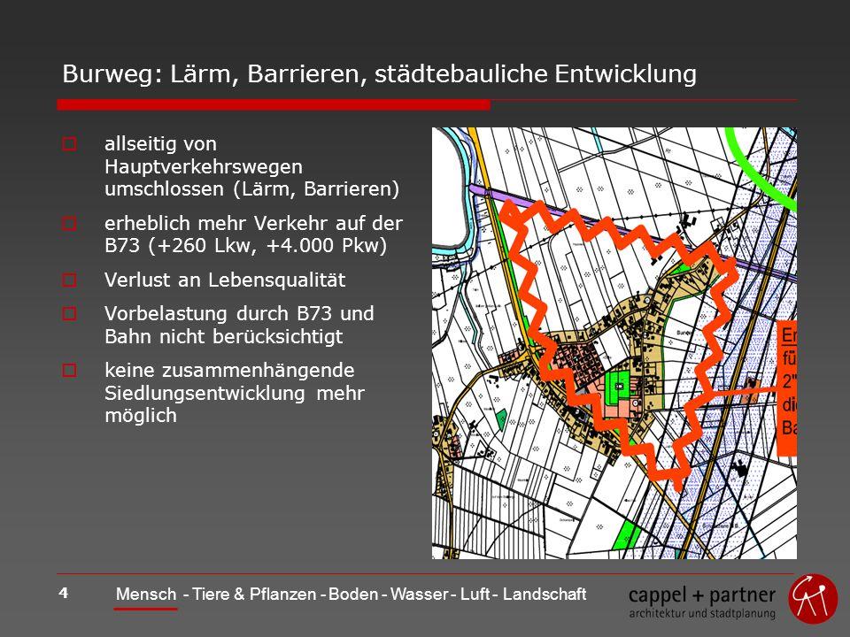 4 Mensch - Tiere & Pflanzen - Boden - Wasser - Luft - Landschaft Burweg: Lärm, Barrieren, städtebauliche Entwicklung allseitig von Hauptverkehrswegen umschlossen (Lärm, Barrieren) erheblich mehr Verkehr auf der B73 (+260 Lkw, +4.000 Pkw) Verlust an Lebensqualität Vorbelastung durch B73 und Bahn nicht berücksichtigt keine zusammenhängende Siedlungsentwicklung mehr möglich