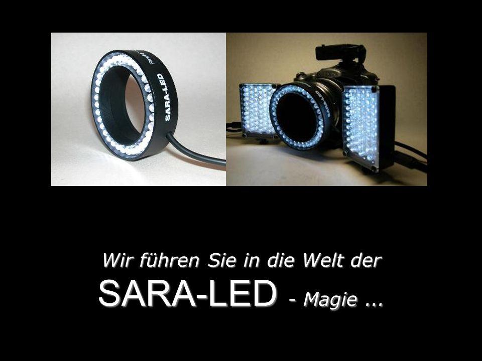 Wir führen Sie in die Welt der SARA-LED - Magie...