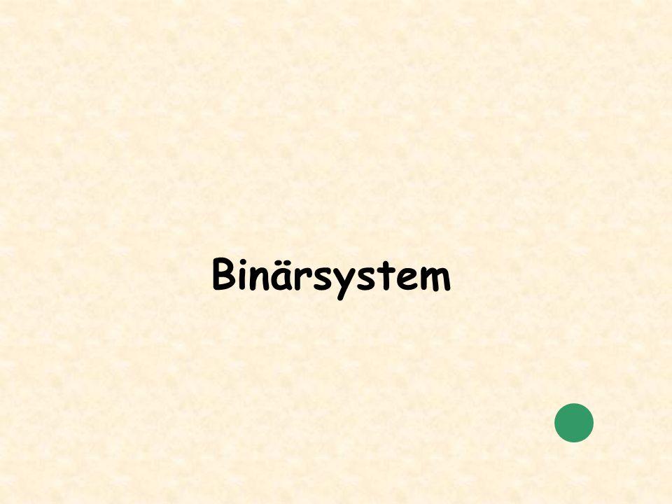 Binärsystem