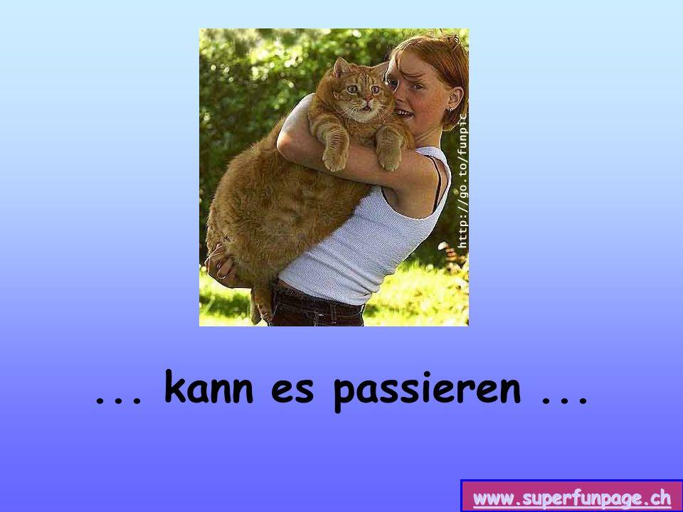 www.superfunpage.ch... kann es passieren...