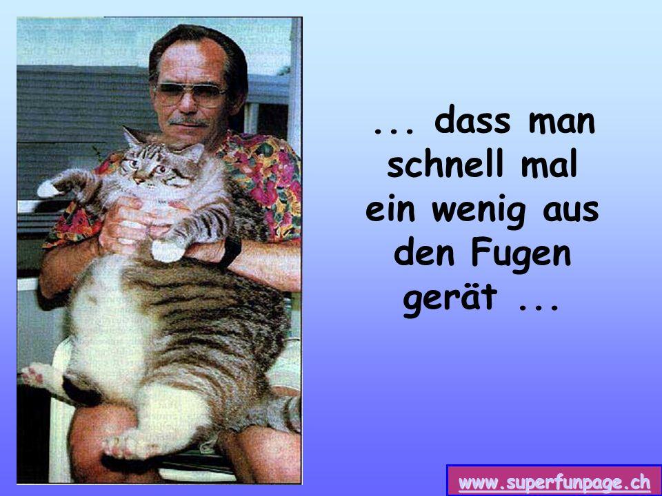 www.superfunpage.ch... dass man schnell mal ein wenig aus den Fugen gerät...