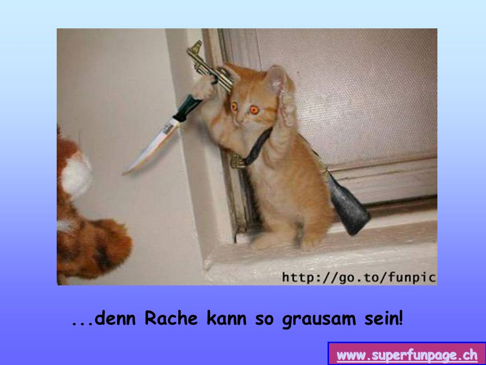 www.superfunpage.ch...denn Rache kann so grausam sein!