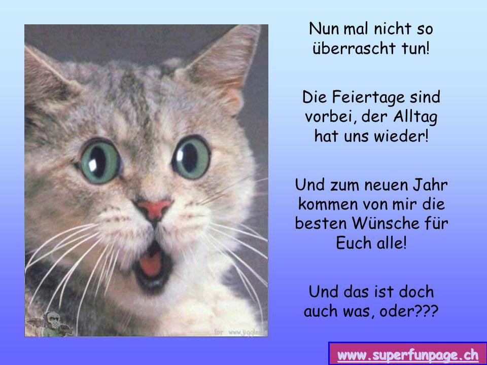 www.superfunpage.ch Nun mal nicht so überrascht tun.