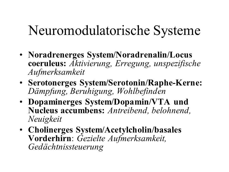 Neuromodulatorische Systeme Noradrenerges System/Noradrenalin/Locus coeruleus: Aktivierung, Erregung, unspezifische Aufmerksamkeit Serotonerges System