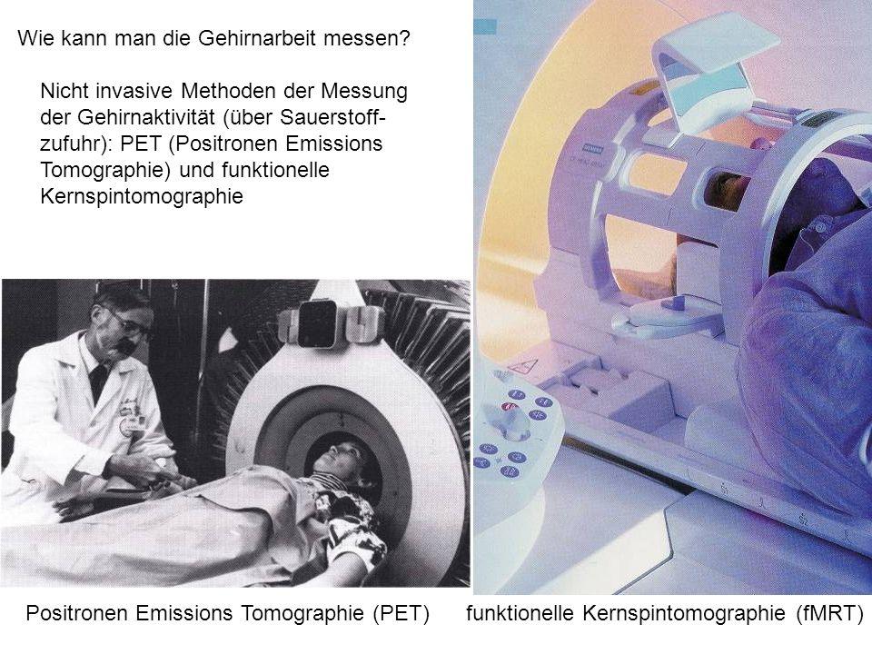 funktionelle Kernspintomographie (fMRT) Nicht invasive Methoden der Messung der Gehirnaktivität (über Sauerstoff- zufuhr): PET (Positronen Emissions T