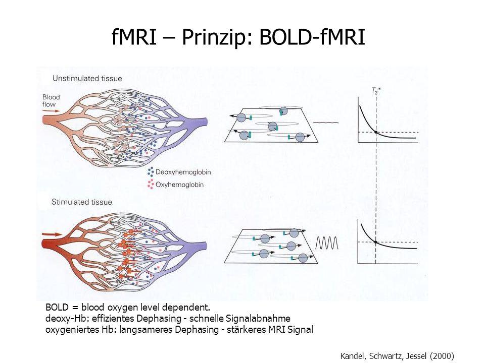 fMRI – Prinzip: BOLD-fMRI Kandel, Schwartz, Jessel (2000) BOLD = blood oxygen level dependent. deoxy-Hb: effizientes Dephasing - schnelle Signalabnahm