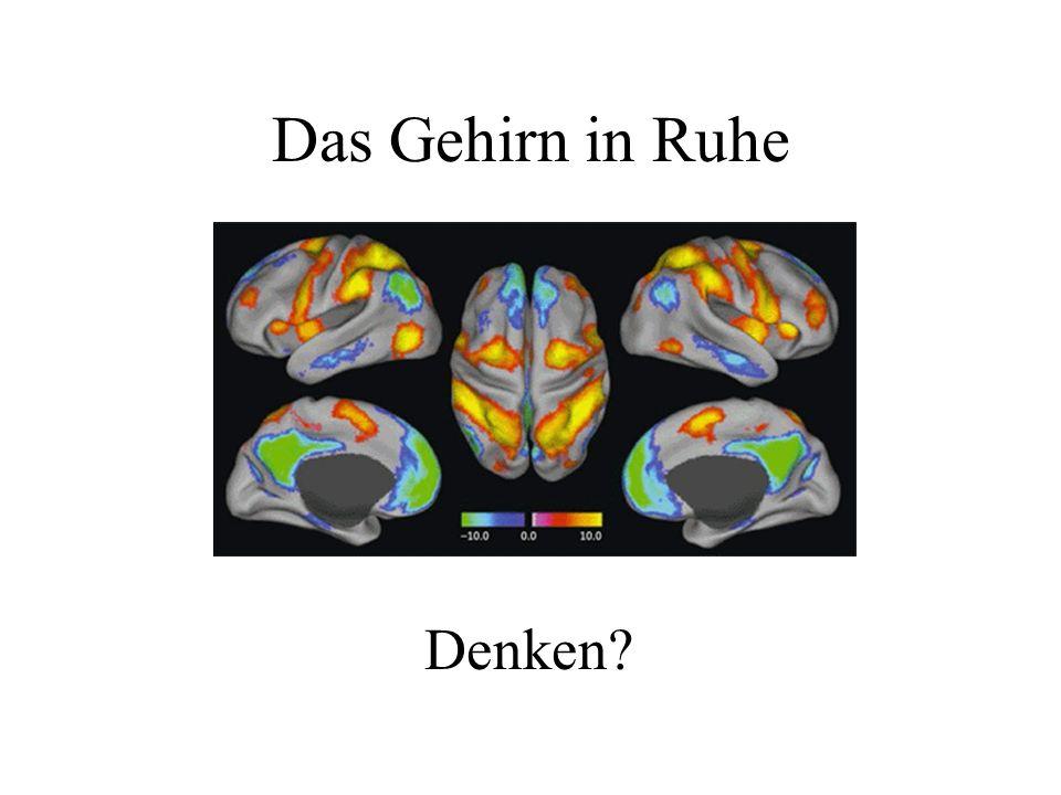 Das Gehirn in Ruhe Denken?