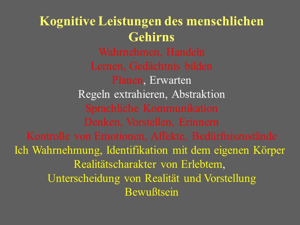 Kognitive Leistungen des menschlichen Gehirns Wahrnehmen, Handeln Lernen, Gedächtnis bilden Planen, Erwarten Regeln extrahieren, Abstraktion Sprachlic