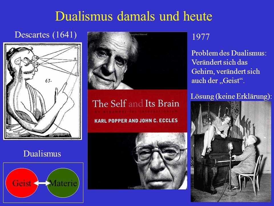 Dualismus damals und heute Descartes (1641) 1977 Problem des Dualismus: Verändert sich das Gehirn, verändert sich auch der Geist. Lösung (keine Erklär