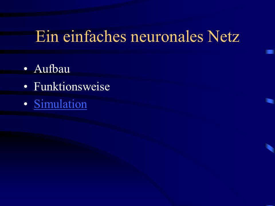 Ein einfaches neuronales Netz Aufbau Funktionsweise Simulation