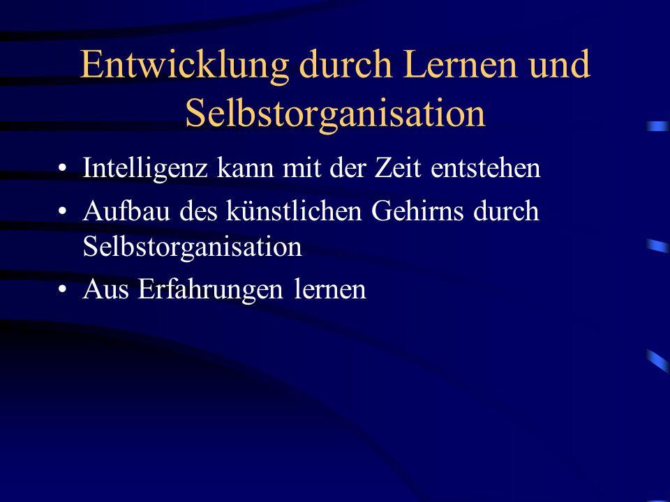 Entwicklung durch Lernen und Selbstorganisation Intelligenz kann mit der Zeit entstehen Aufbau des künstlichen Gehirns durch Selbstorganisation Aus Er