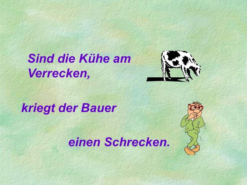 Sind die Kühe am Verrecken, kriegt der Bauer einen Schrecken.