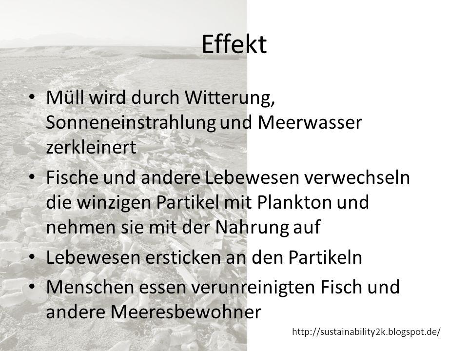 http://sustainability2k.blogspot.de/ Was kann ich tun.