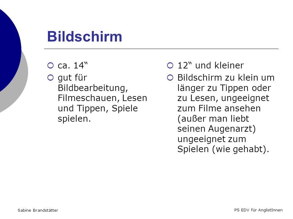 Sabine Brandstätter PS EDV für AnglistInnen Bildschirm ca.