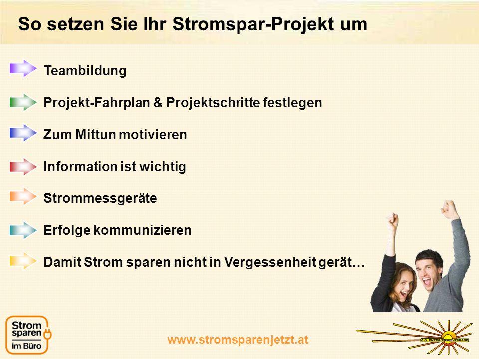 So setzen Sie Ihr Stromspar-Projekt um Teambildung Projekt-Fahrplan & Projektschritte festlegen Zum Mittun motivieren Information ist wichtig Strommes