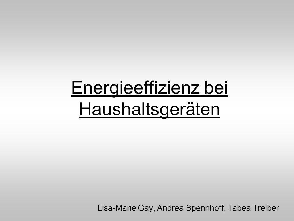 Energieeffizienz bei Haushaltsgeräten Lisa-Marie Gay, Andrea Spennhoff, Tabea Treiber