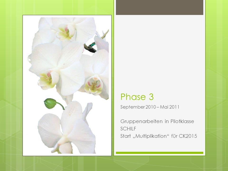 Phase 3 September 2010 – Mai 2011 Gruppenarbeiten in Pilotklasse SCHILF Start Multiplikation für CK2015