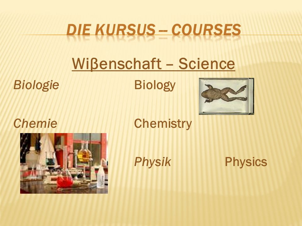 Wiβenschaft – Science BiologieBiology ChemieChemistry PhysikPhysics