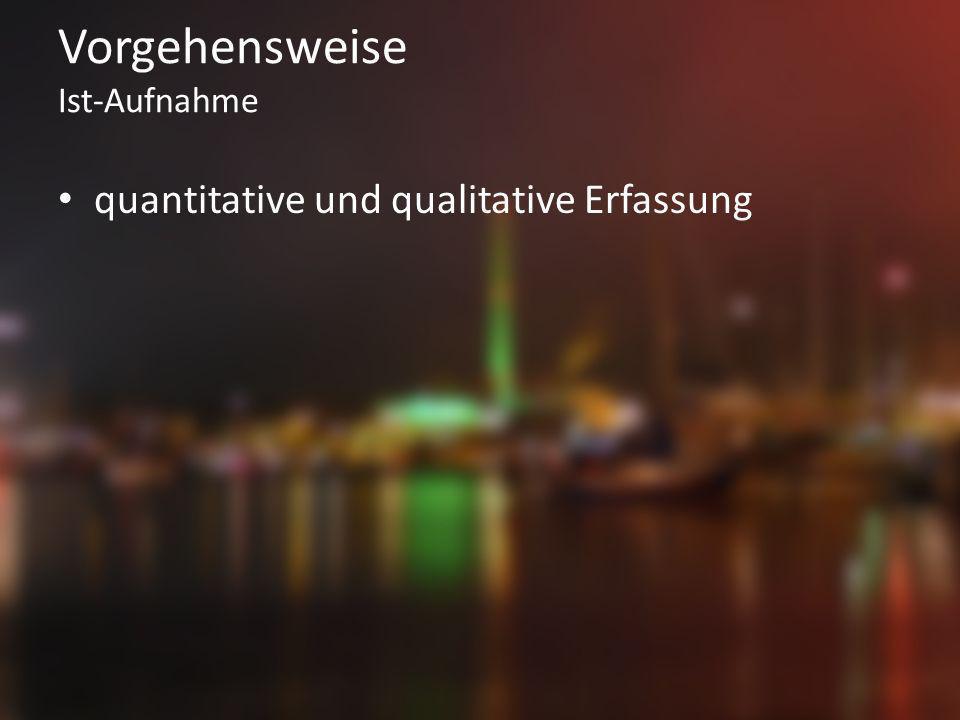 Vorgehensweise Ist-Aufnahme quantitative und qualitative Erfassung