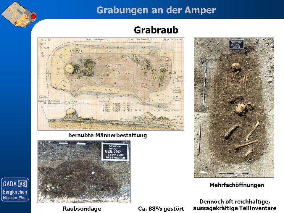 Grabungen an der Amper Grabraub Ca. 88% gestört beraubte Männerbestattung Raubsondage Raubschacht auf Planum 1Mehrfachöffnungen Dennoch oft reichhalti