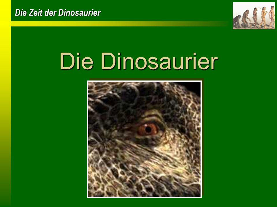 Die Zeit der Dinosaurier Wer waren die Dinosaurier Tierfamilie der Reptilien Eierlegende Tiere Erste Dinosaurier vor etwa 220 Millionen Jahren beherrschten beinahe 160 Millionen Jahre die Erde Beinstellung nicht seitlich vom Körper sondern darunter