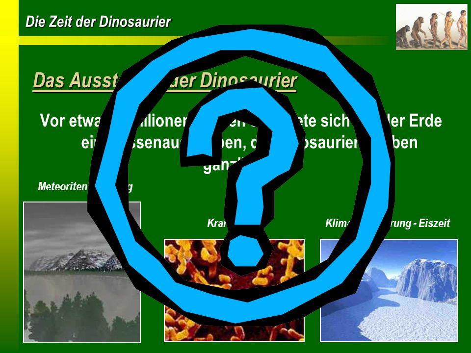 Die Zeit der Dinosaurier Das Aussterben der Dinosaurier Vor etwa 65 Millionen Jahren ereignete sich auf der Erde ein Massenaussterben, die Dinosaurier