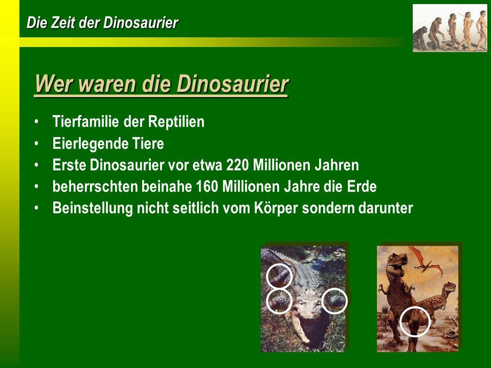 Die Zeit der Dinosaurier Wer waren die Dinosaurier Tierfamilie der Reptilien Eierlegende Tiere Erste Dinosaurier vor etwa 220 Millionen Jahren beherrs