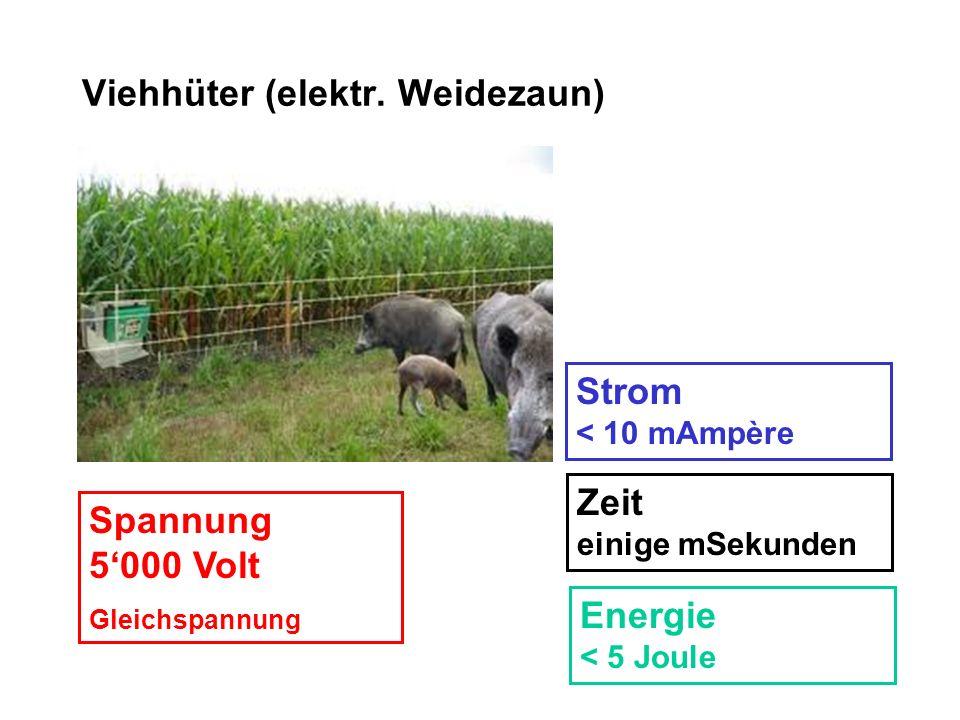 Viehhüter (elektr. Weidezaun) Spannung 5000 Volt Gleichspannung Strom < 10 mAmpère Zeit einige mSekunden Energie < 5 Joule