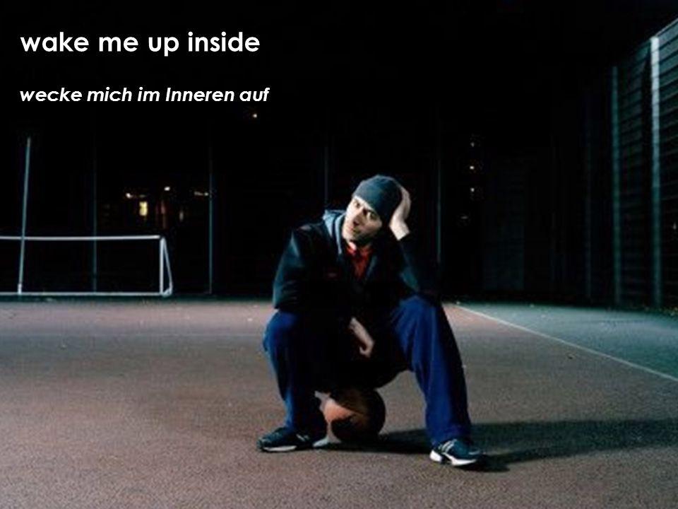 wecke mich im Inneren auf wake me up inside
